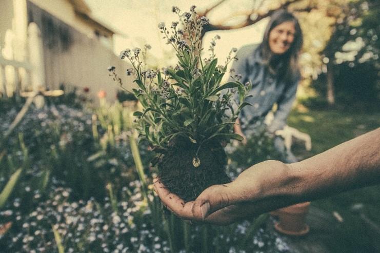 5 tips tuin aanleggen